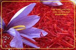 خرید و صادرات زعفران